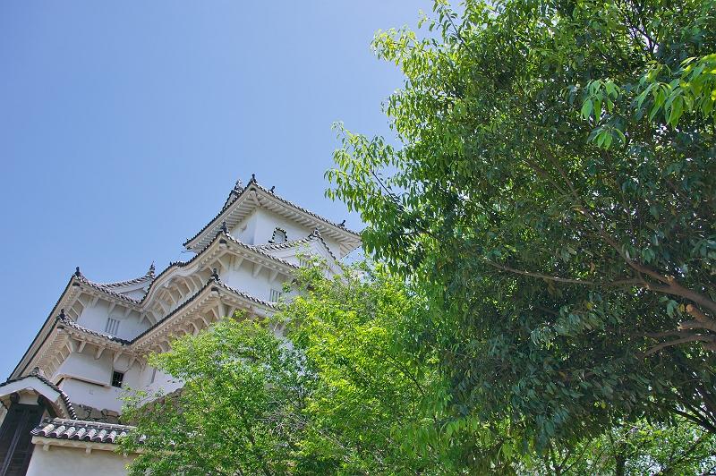 姫路城 三 新緑の風景