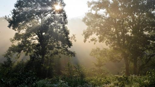 8921霧が谷16894