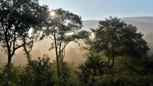 8936霧が谷16895
