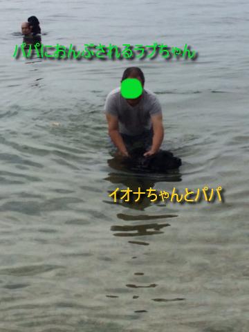 IMG_4080_20160724142213d6e.jpg