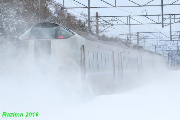 0Z4A5204.jpg