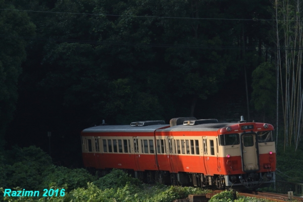 0Z4A5235.jpg