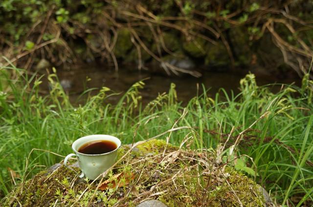 水辺でコーヒー