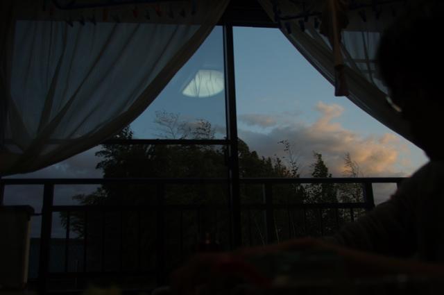 居間から見える景色