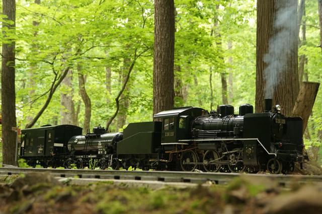 新緑の中を行く小貨物列車
