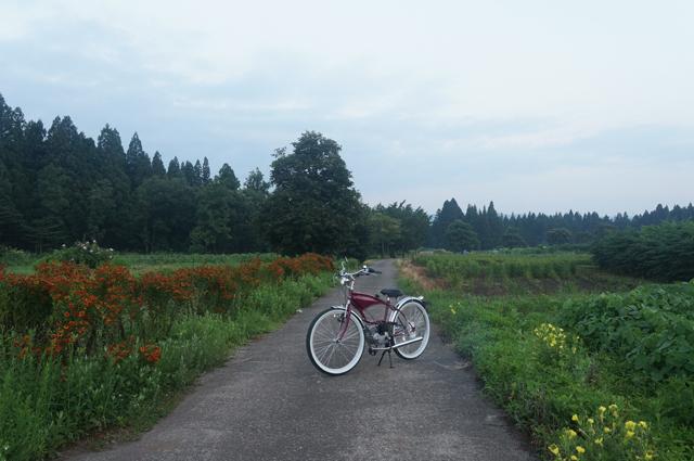 フキプランニングFK310 LAⅢ 新潟の農道にて