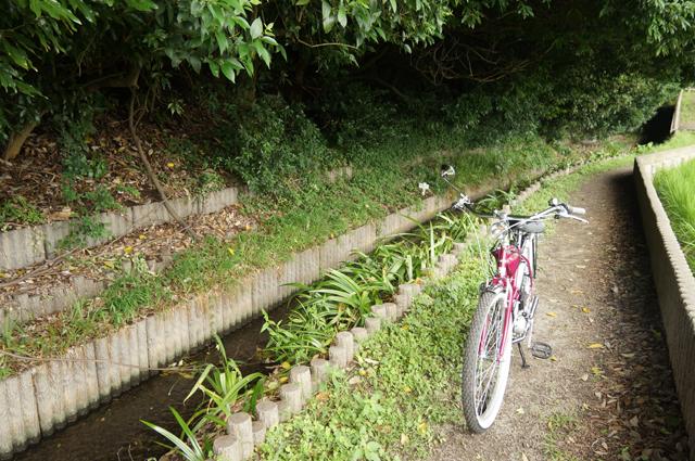 中央道 府中国立IC付近崖沿いを行く用水路