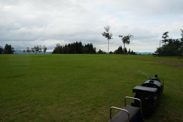 芝生の上を行く