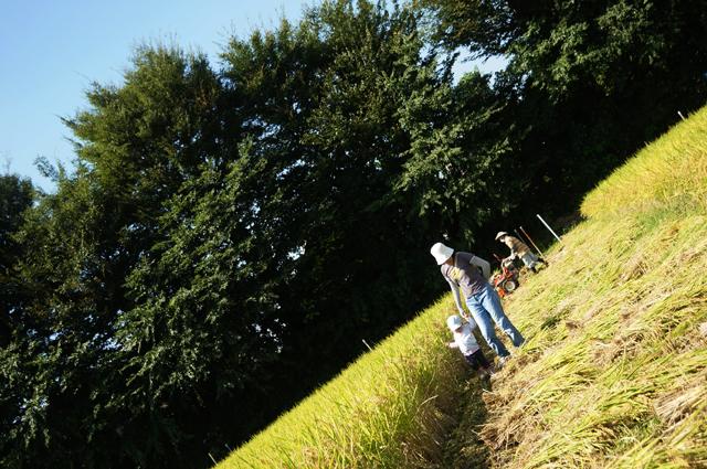 圃場を歩く親子の一コマ