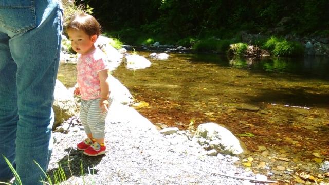 秋川の清流で遊ぶ