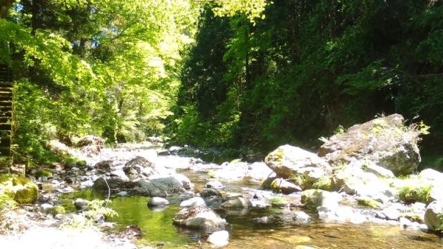 秋川の清らかな清流