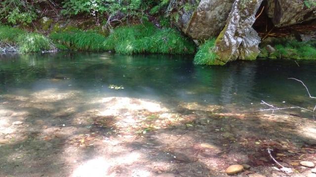 秋川の清流