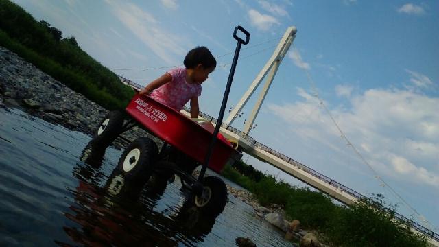 川を渡るラジオフライヤー