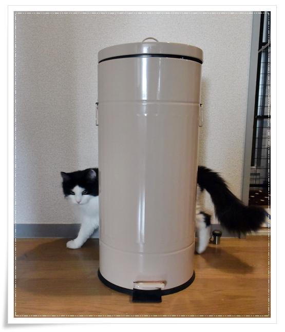 ペダル式フタ付きゴミ箱感想