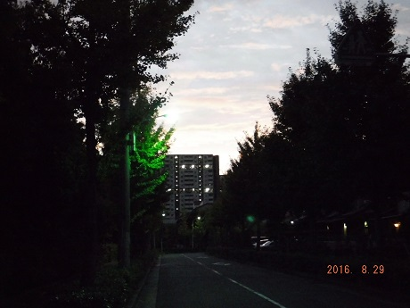20160829S0170097 (3)