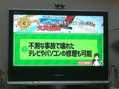 hatumimi5201696.jpg