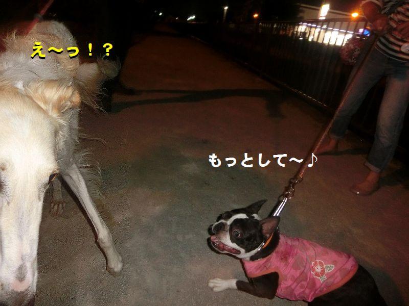 e_201608131040345d4.jpg