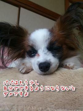 bB21FZ7CIQj_XGf1471610269_1471610458.jpg