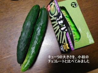 0605kyu-ri2.jpg