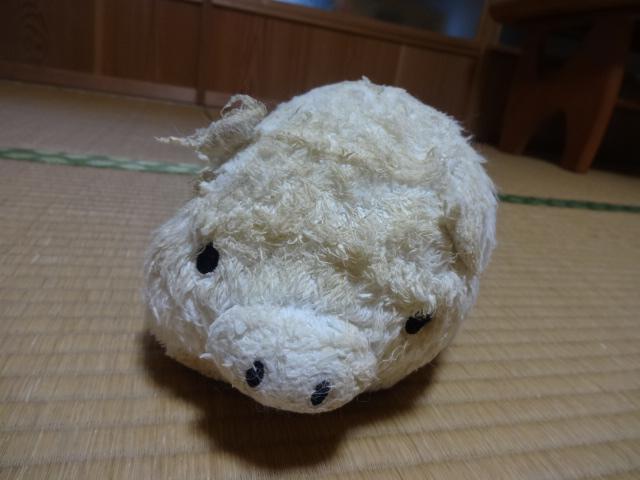 H28うーしゃん誕生日 (3)