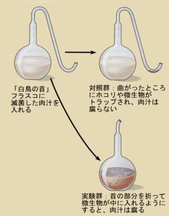 pastour_experiment.jpg