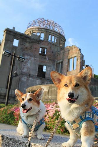 原爆ドームをバックに