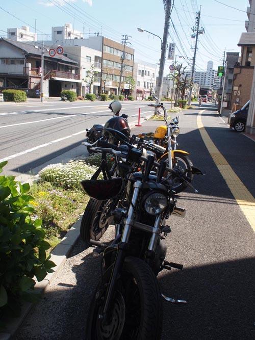 P4298987.jpg