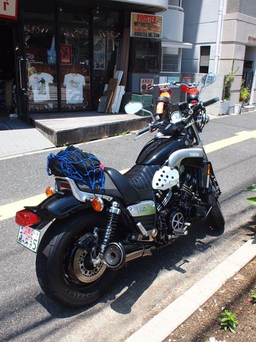 P5300865.jpg