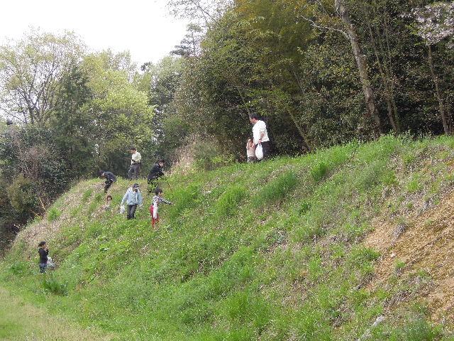 山野草採り