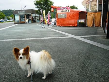 東名浜松PA:チャキ2