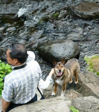 白糸の滝:ワンコ3