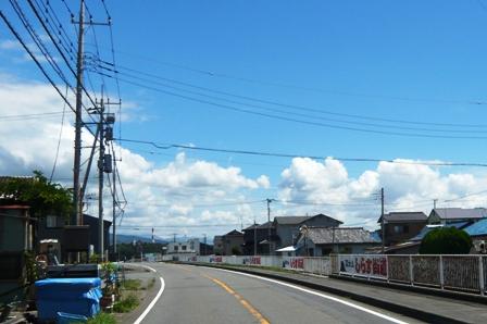 田子の浦漁協食堂:しらす街道