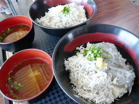 田子の浦漁協食堂:釜揚げ丼、釜・生丼