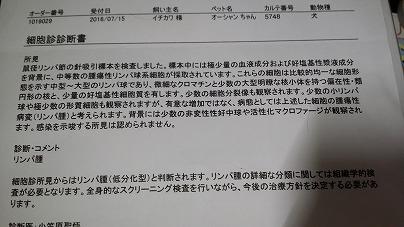 s-20160721_131505.jpg