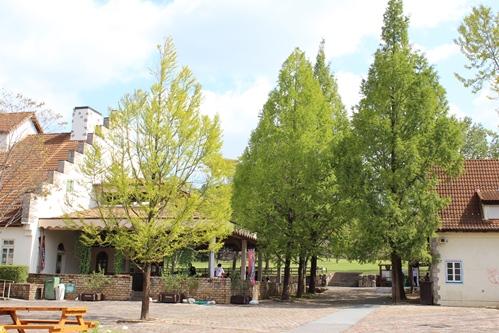 ドイツの森1