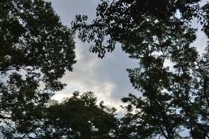 Clraring Sky