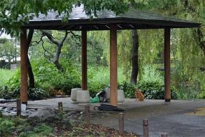 日比谷公園心字池の東屋