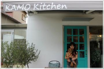 H28081501カモキッチン