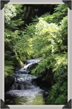 H28082006濃溝の滝