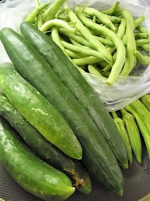 20160730お福分け夏野菜