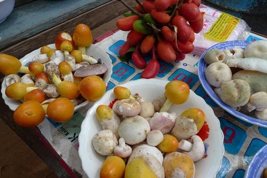 20161023カンボジア料理_キノコ