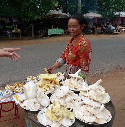 20161023カンボジア料理_キノコ売り