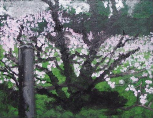 南無の木2