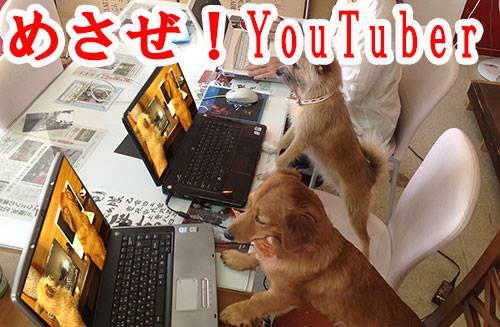 YouTuber 犬