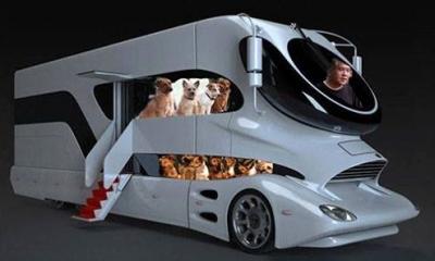 犬のキャンピングカー