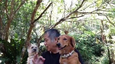 愛犬物語、愛犬サンバ