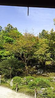 20160430天龍寺(その34)