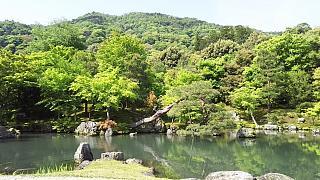 20160430天龍寺(その53)