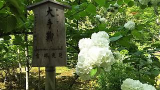 20160430天龍寺(その70)