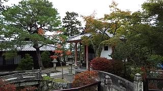 20151120清水寺(その17)